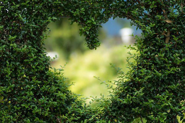 Ideas para San Valentín, el fin de semana de los enamorados