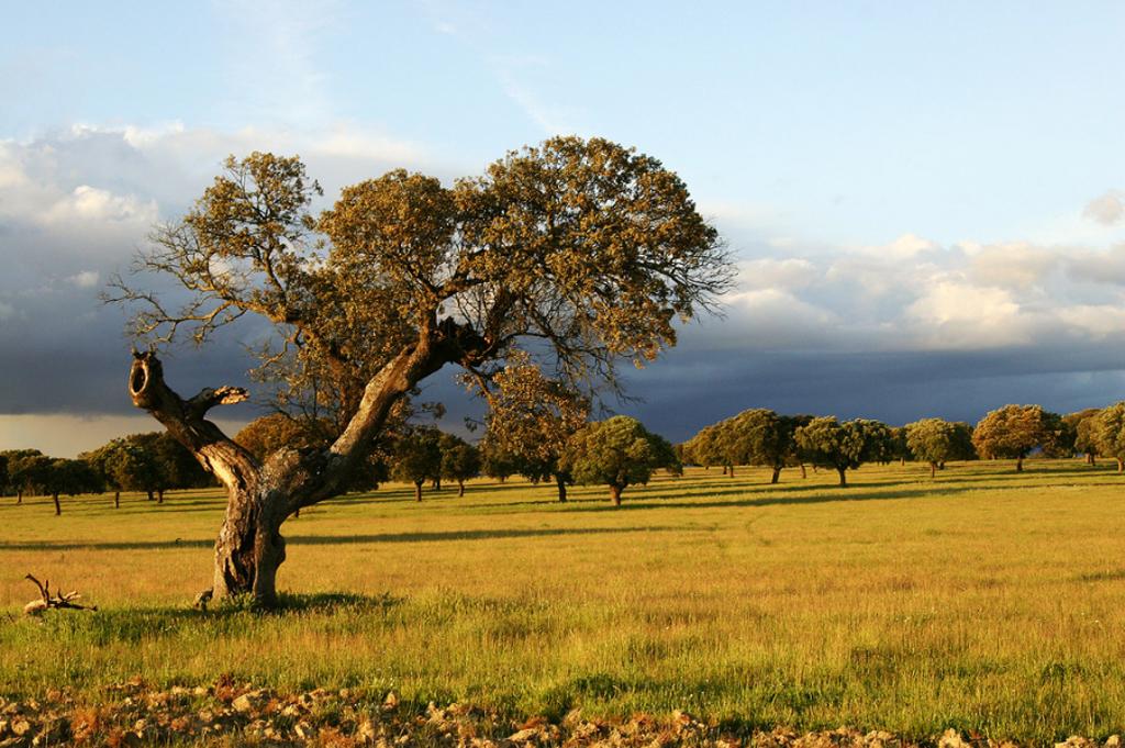 5 rincones para visitar en Extremadura