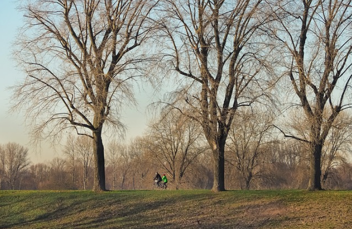 5 rutas para hacer el Camino de Santiago en bicicleta