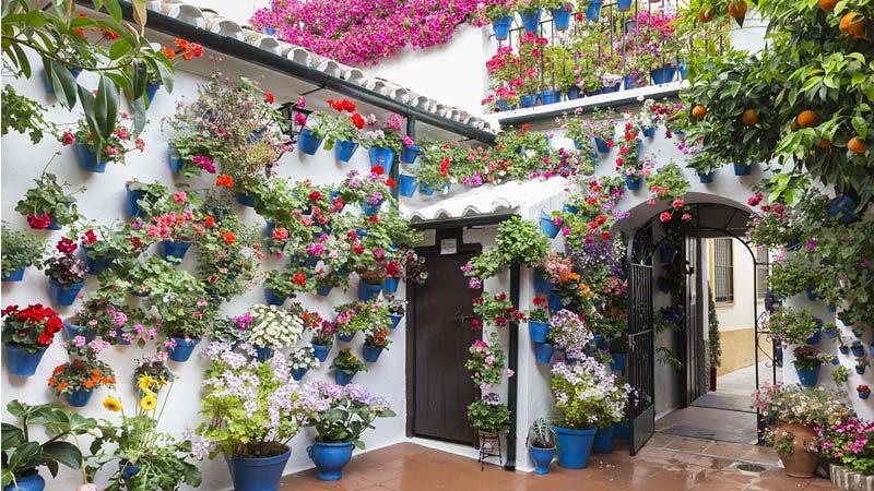 Descubre los Patios de Córdoba en su mejor época