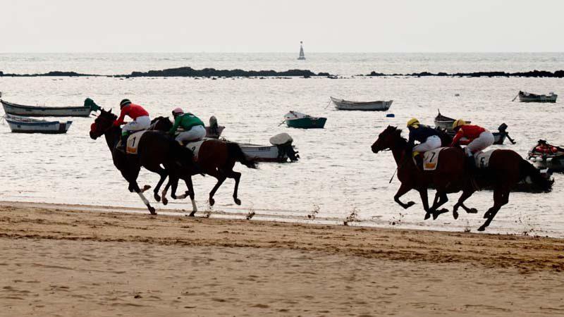 Disfruta de las carreras de caballos de Sanlúcar de Barrameda