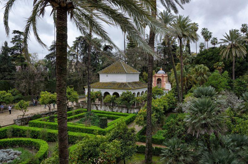 Realiza puenting por encima del río Agrio en Sevilla